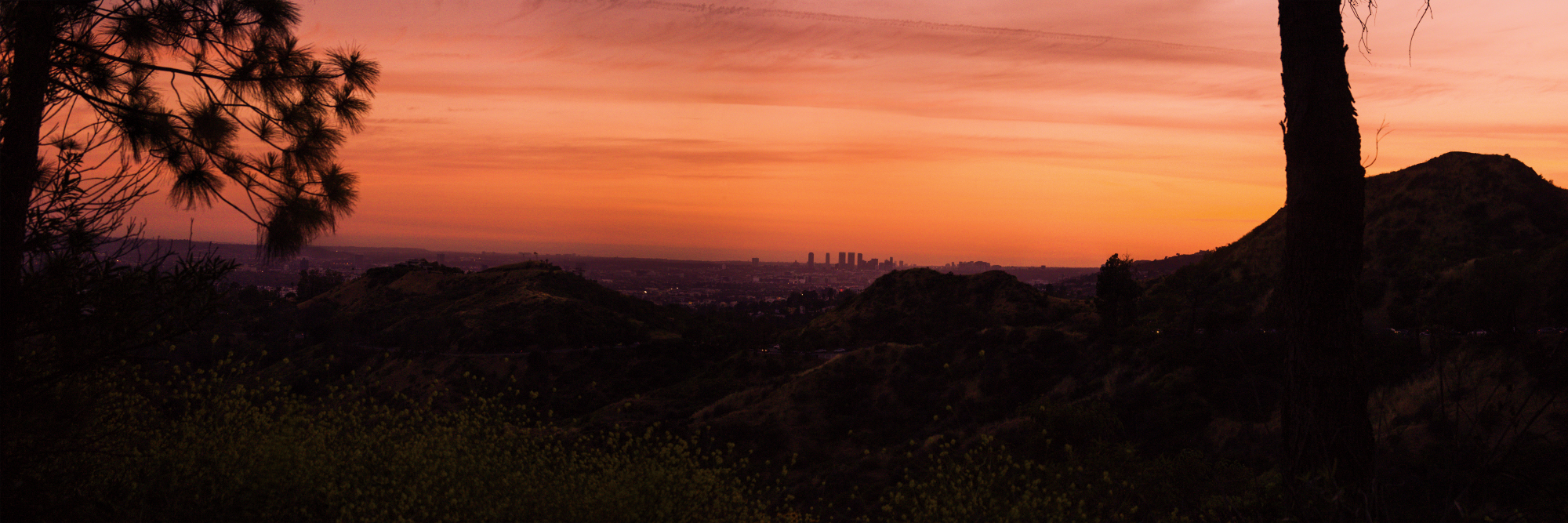 Beautiful orange and yellow sunset with the Los Angeles city skyline in the distance. The silhouettes of mountains and trees are in the foreground.