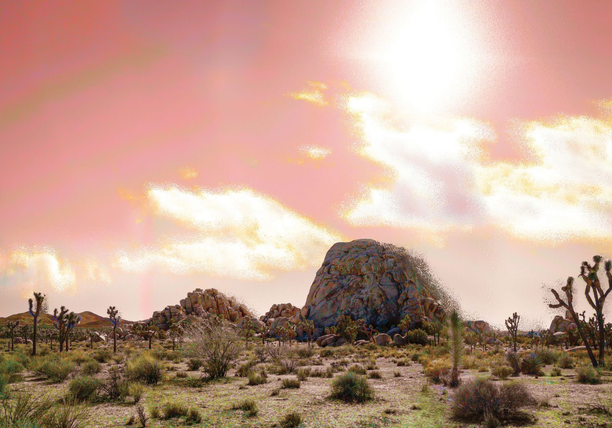 Conceptual abstract landscape photograph of Joshua Tree National Park in California.